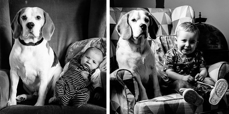 Father Took Pictures of His Son and Beagle Every Month for the Last Three Years in the Same Chair